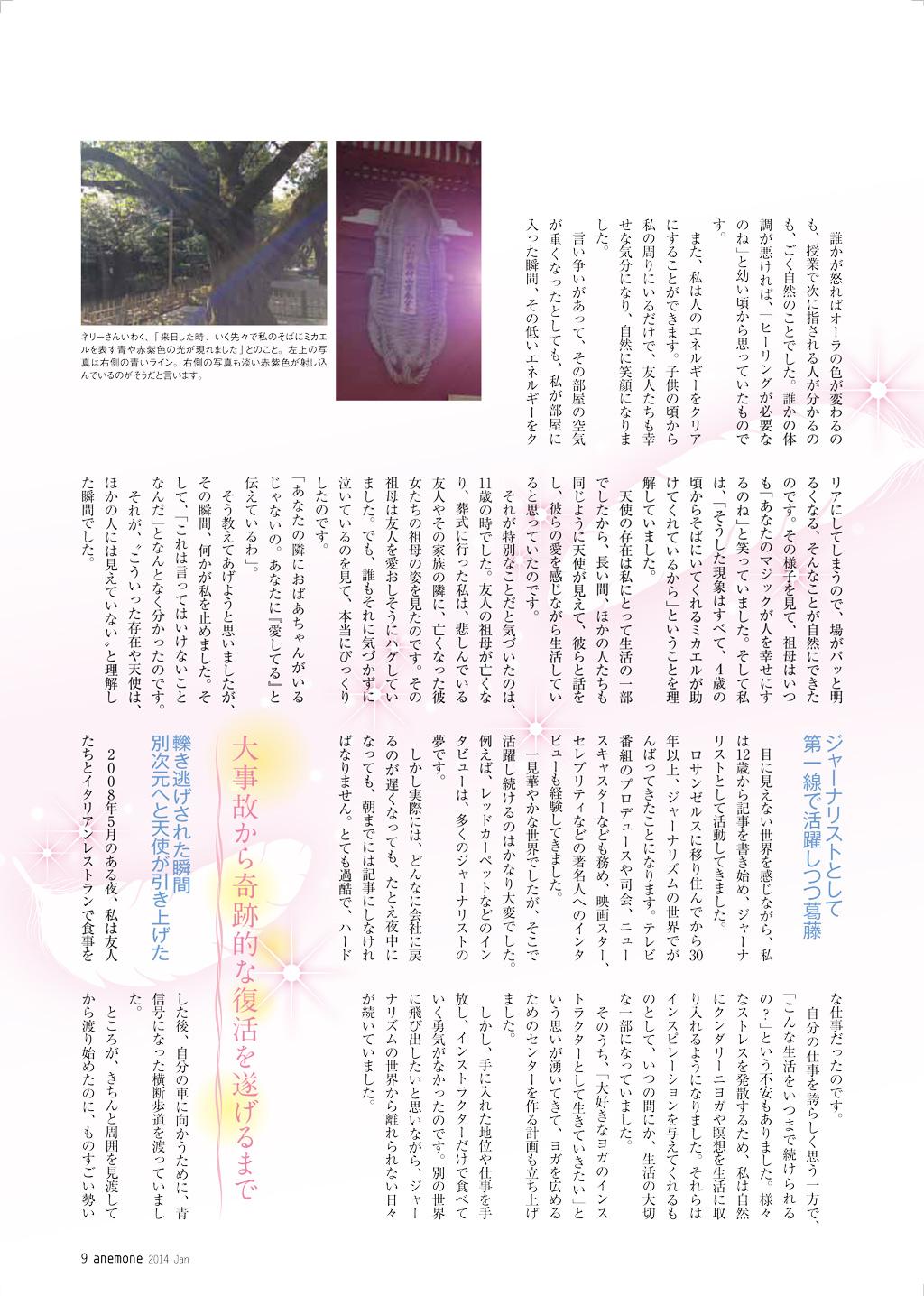 Anemon-Jan-2014-page2